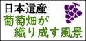 日本遺産「葡萄畑が織り成す風景」